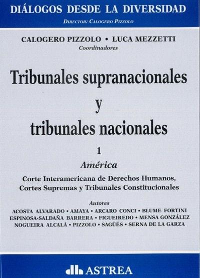 Libro: Tribunales supranacionales y tribunales nacionales  - Autor: Colagero Pizzolo - Isbn: 9789877061321