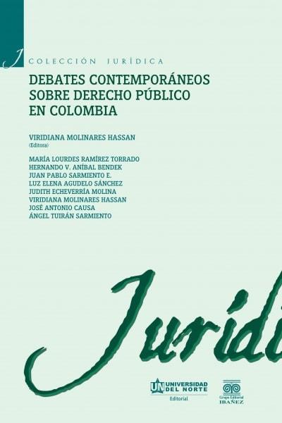 Libro: Debates contemporáneos sobre derecho público en Colombia | Autor: María Lourdes Ramírez Torrado | Isbn: 9789587416121