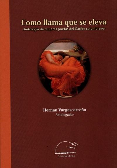 Libro: Como llama que se eleva | Autor: Hernan Vargascarreño | Isbn: 9789585959231