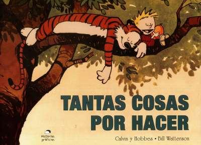 Calvin y Hobbies. Tantas cosas por hacer