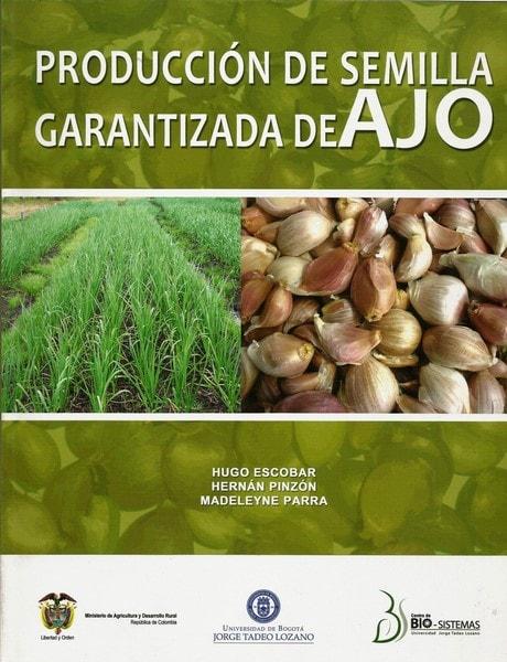 Producción de semilla garantizada de ajo - Hugo Escobar - 9587251036